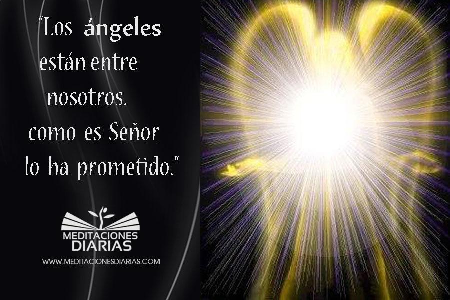 Noche de ángeles