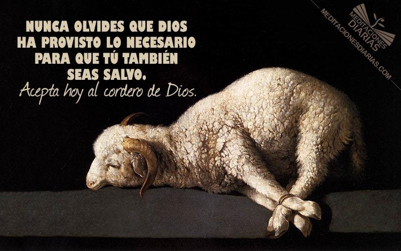 Dios proveerá el cordero