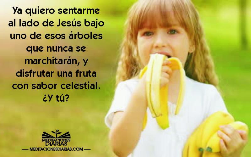 Frutas con sabor celestial