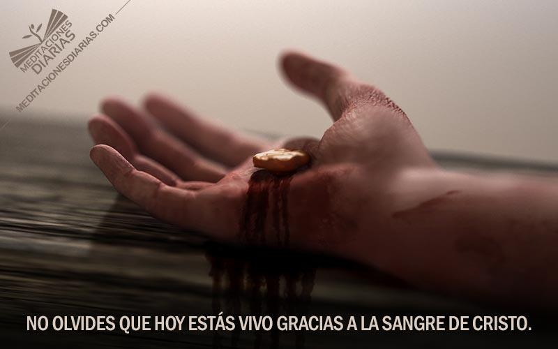 """""""Su sangre me cubrió"""""""