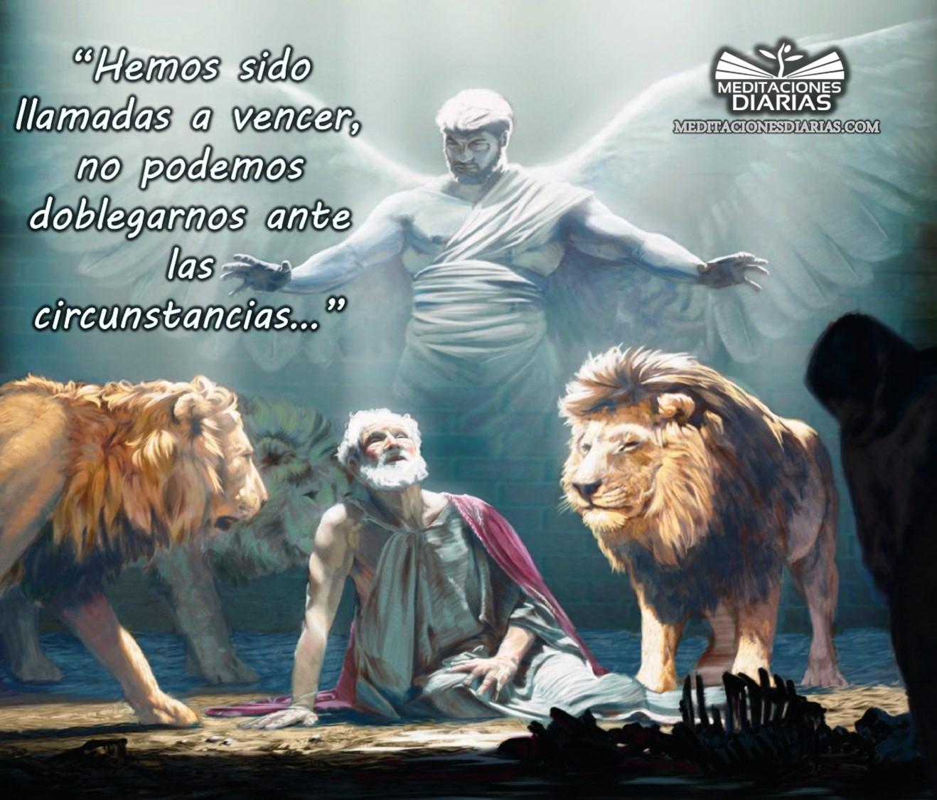 La fortaleza del cristiano