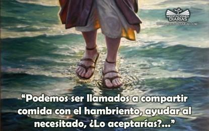 En las Pisadas de Jesús